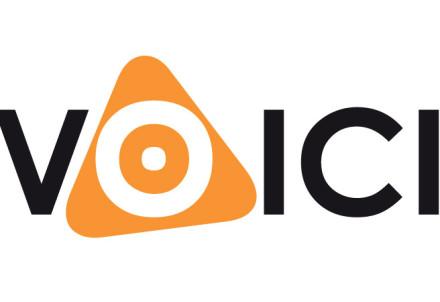 logo - Voici webdiensten - 01